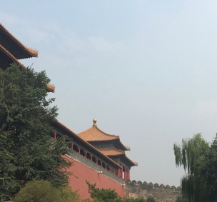 China roof view 1