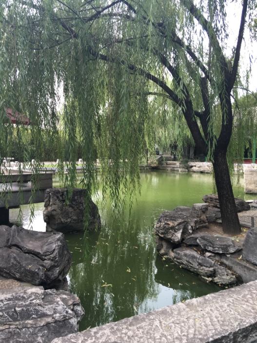 the lake by teh bar