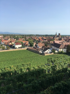 Alsacce View Issenbourg