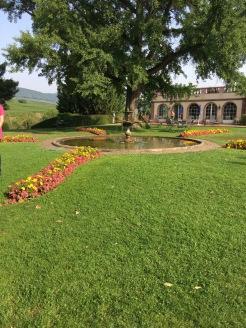Alscae garden view