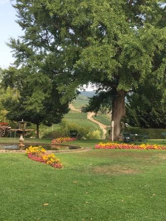 Alscae garden